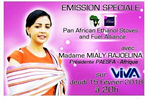 Mialy Rajoelina, Leader de l'Afrique en Energie verte
