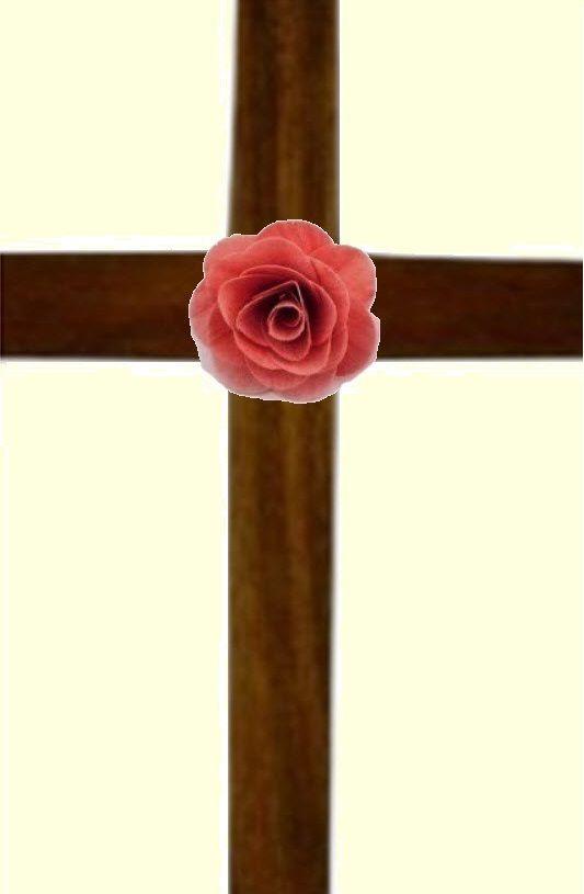 La Recherche de la Vieille Rose+Croix