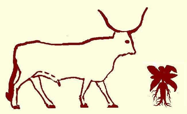 L'Aurochs et la Mandragore (légende égyptienne)
