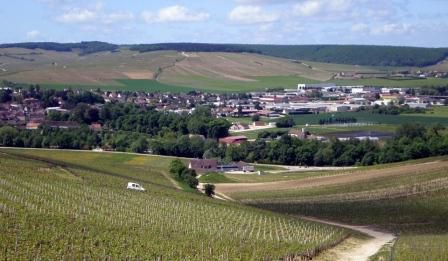 « L'Europe et le vin ou comment défendre ses intérêts »