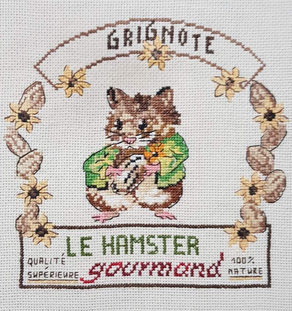 Grignote  le hamster