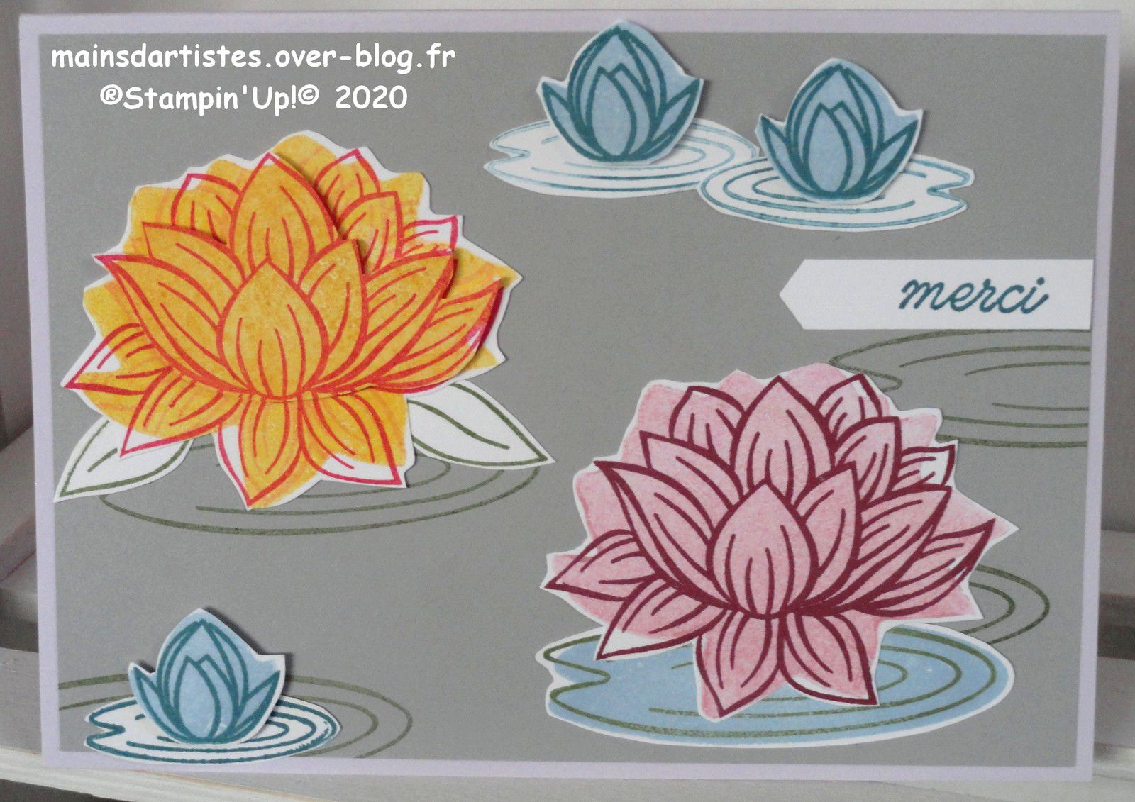 LOVELY LILY PAD,STAMPIN'UP!
