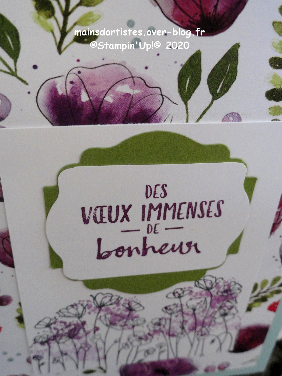 CHAMPS DE COQUELICOTS,STAMPIN'UP!