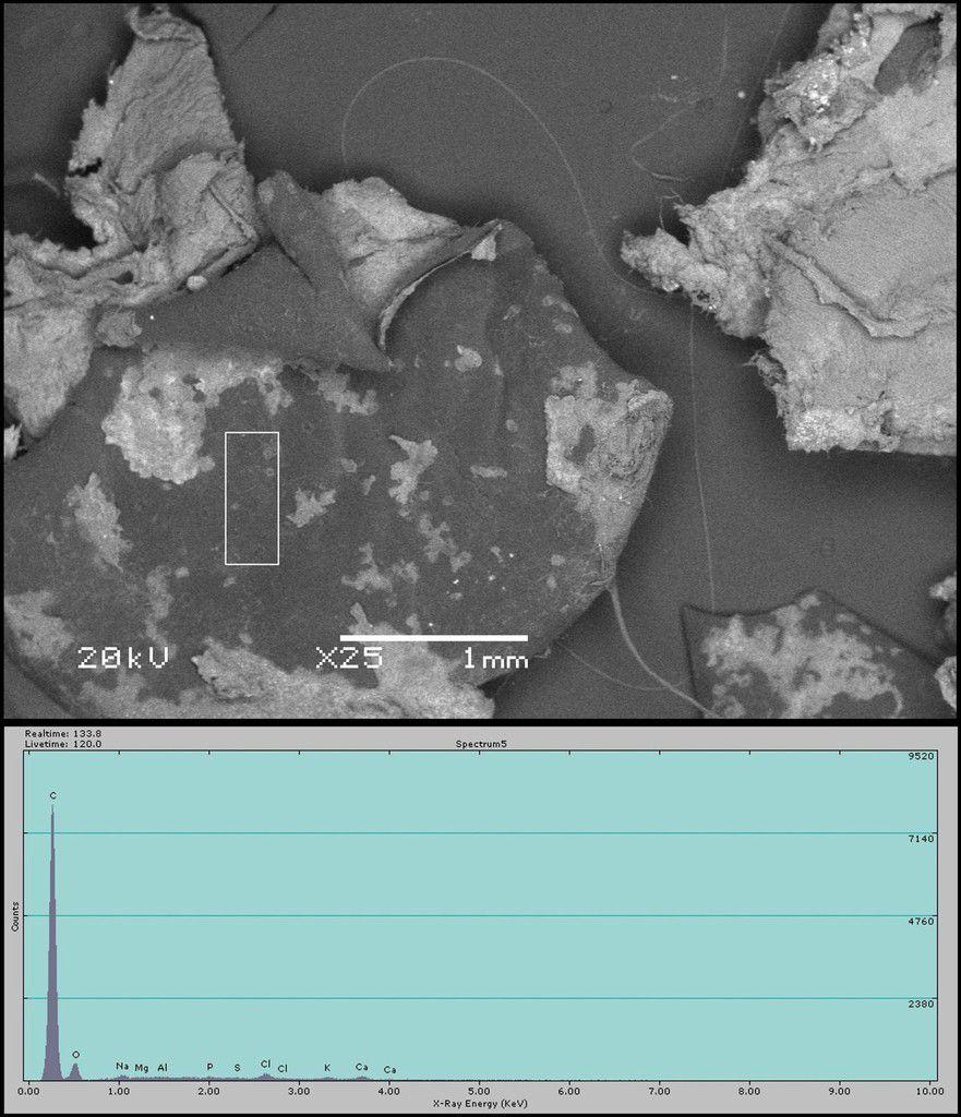 Fig. 8Photographie au microscope à balayage électronique d'un autre échantillon de substance tombée. Le rectangle blanc indique la zone analysée. Les valeurs EDX numériques sont réunies dans le tableau 1.