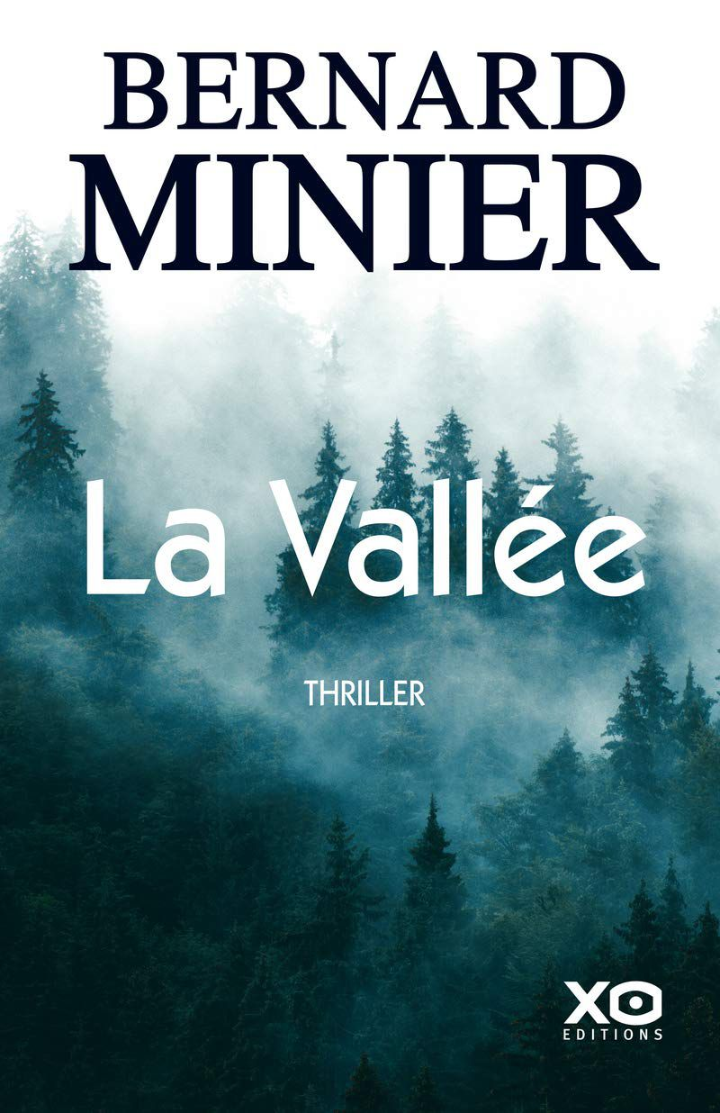 """La vallée, de Bernard Minier"" - ""www.audetourdunlivre.com"""