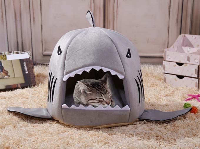 panier_chat_requin_kawaii