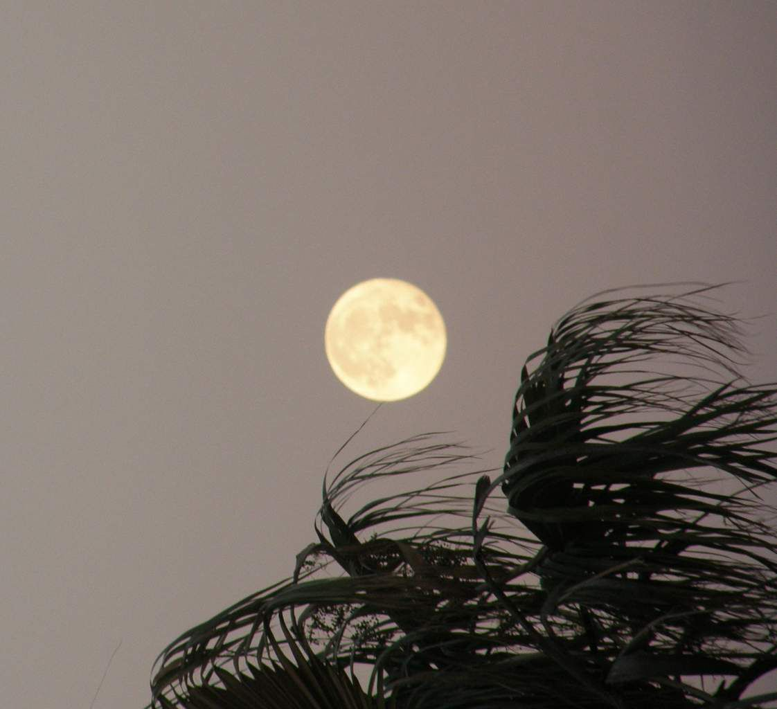 07h25 la lune à 356.510 km
