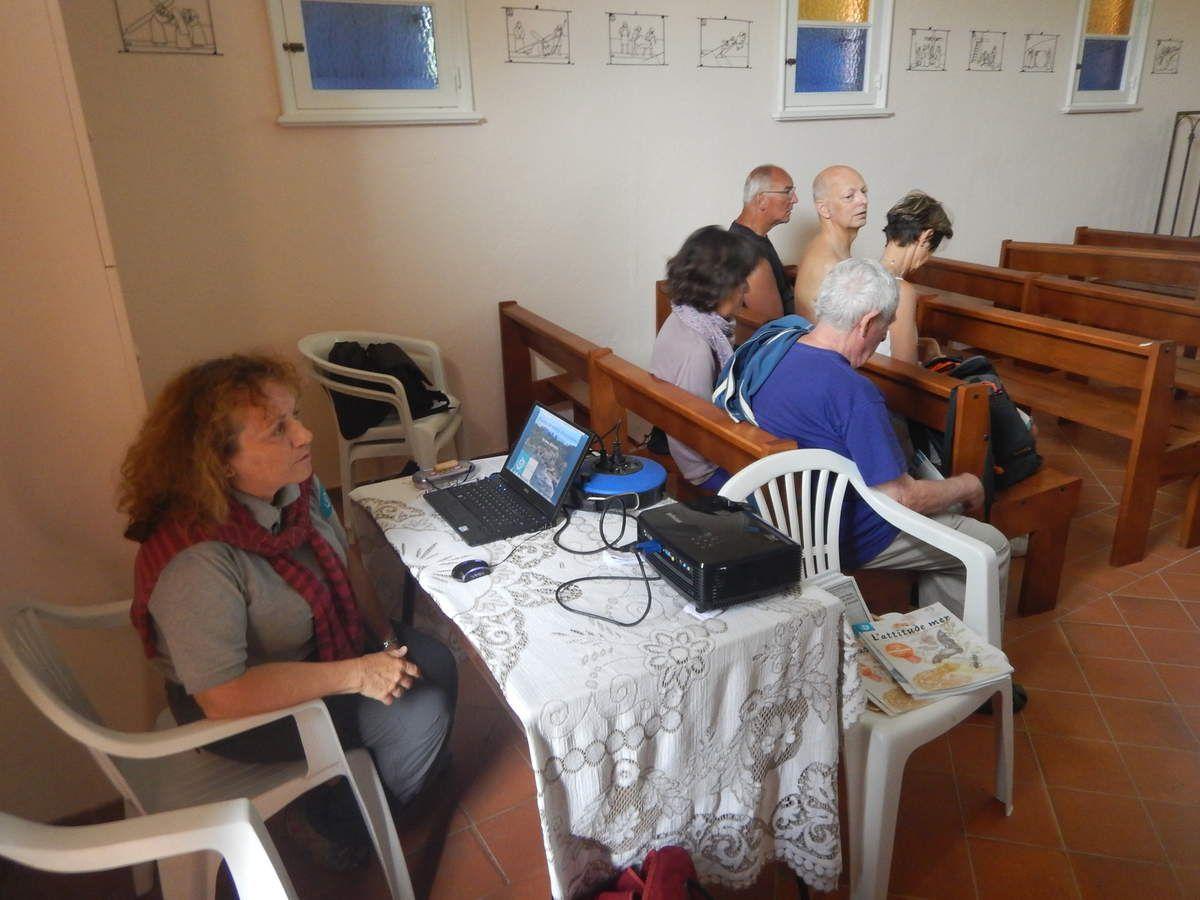 Visite commentée de la Réserve naturelle des Arbousiers avec Annie Aboucaya suivie d'une conférence sur les plantes remarquables des île d'Hyères à la Chapelle