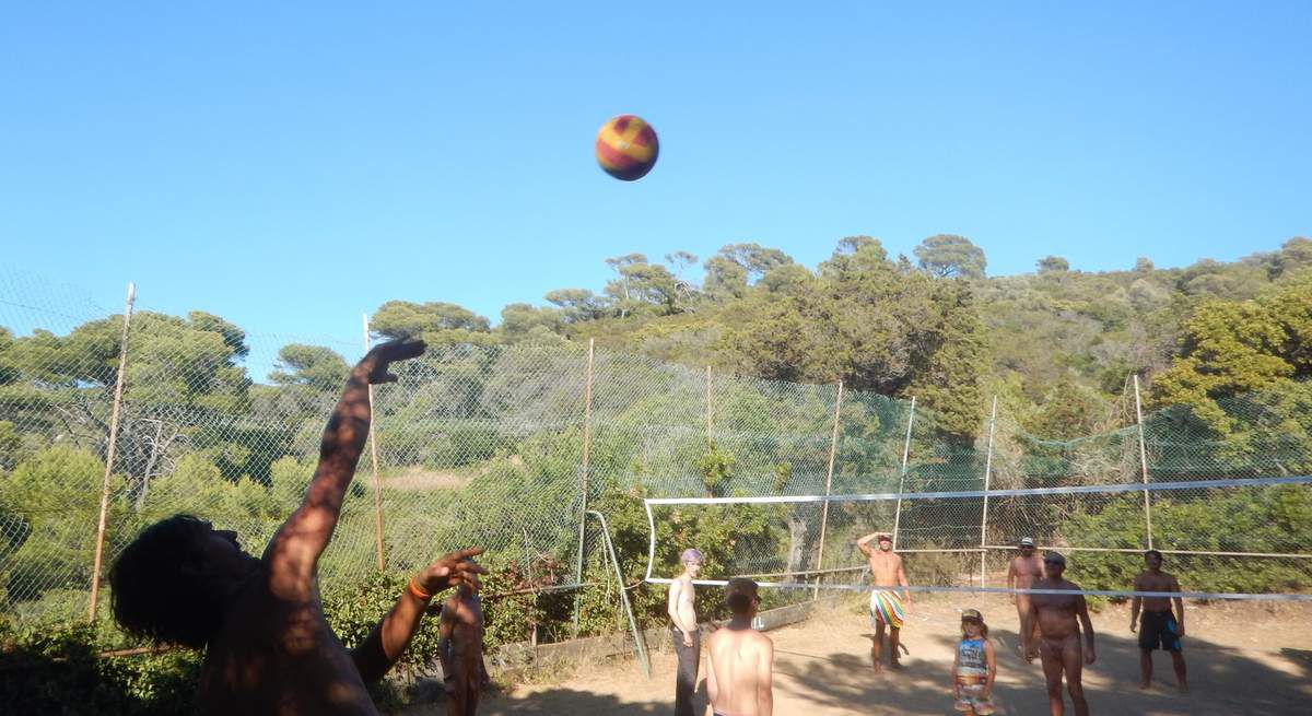 NATATION / COURSE A PIEDS / VOLLEY-BALL