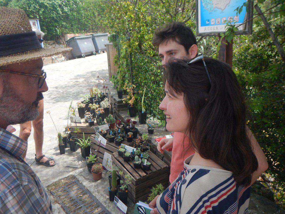 Vente de plantes des Canaries avec Gwenaëlle, Giovanni et Jean-Laurent