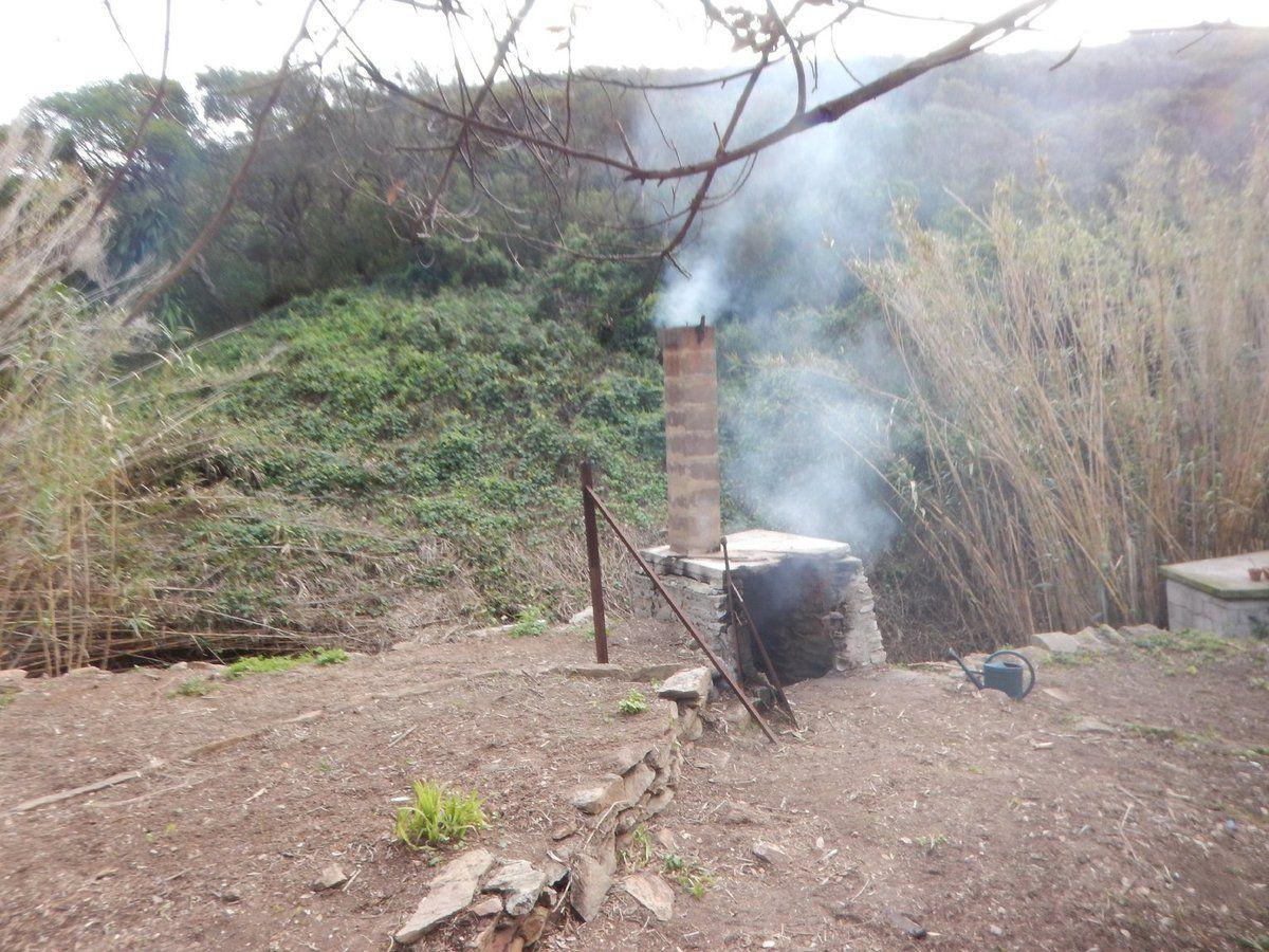 Debroussaillage et brûlage