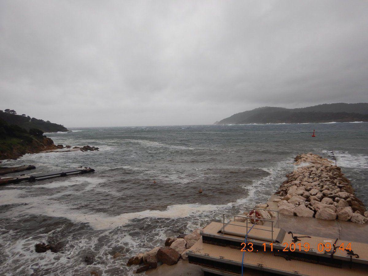 Ayguade de l'île du Levant - 23-11-2019 vers 09h40