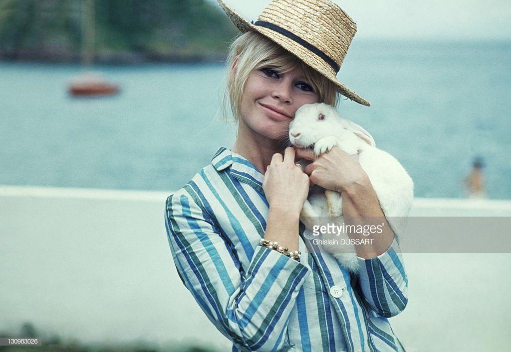 Brigitte Bardot : Noel un petit miracle