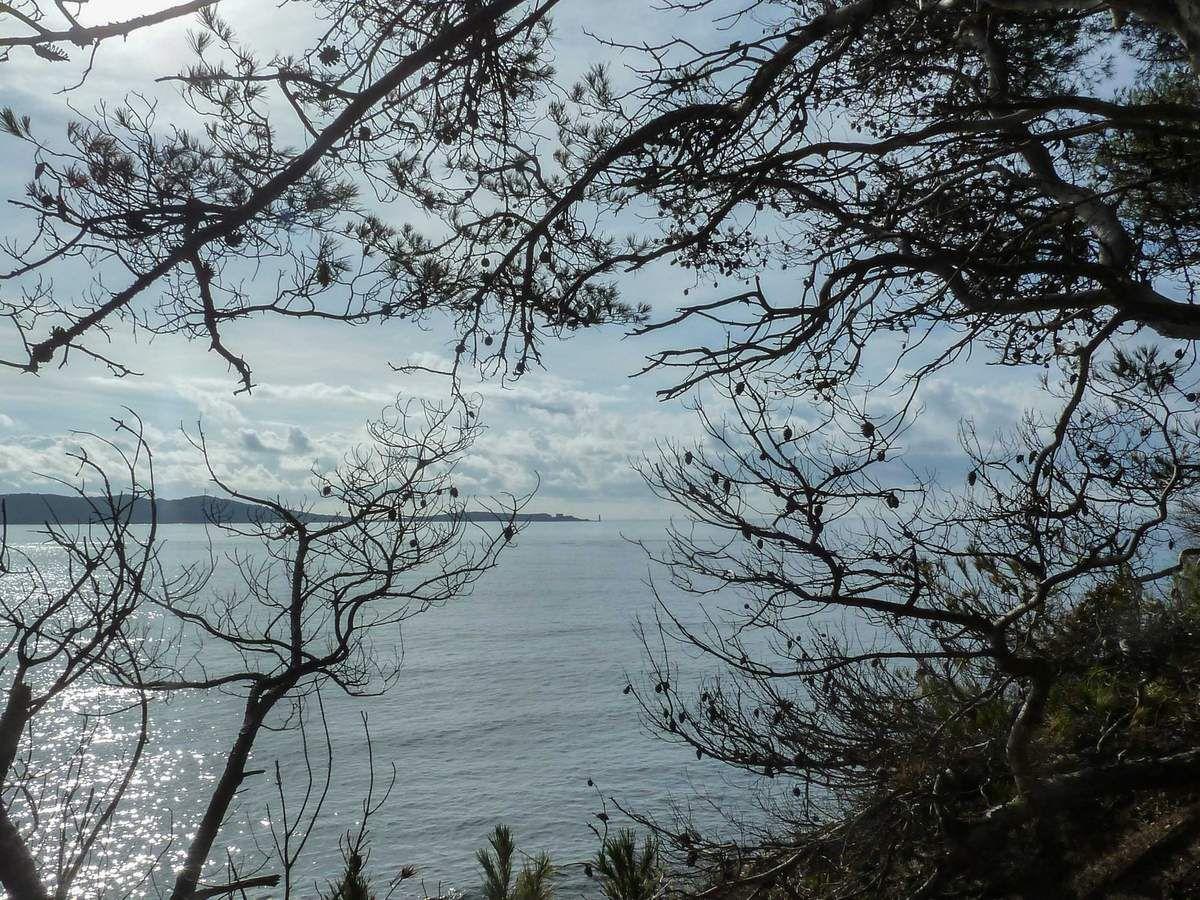 Belle mer , bon apéro en l'honneur du petit Lucien ,...vivement lundi prochain