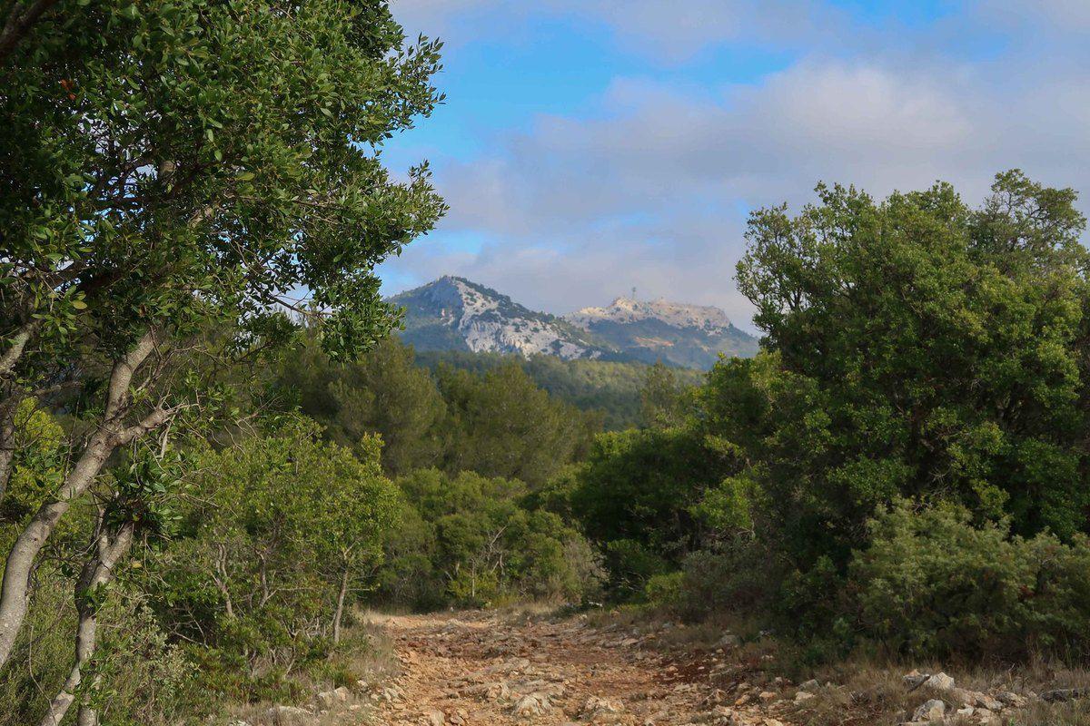 Comme les photos ne le montrent pas , très belle randonnée et très beau panorama sur la rade .
