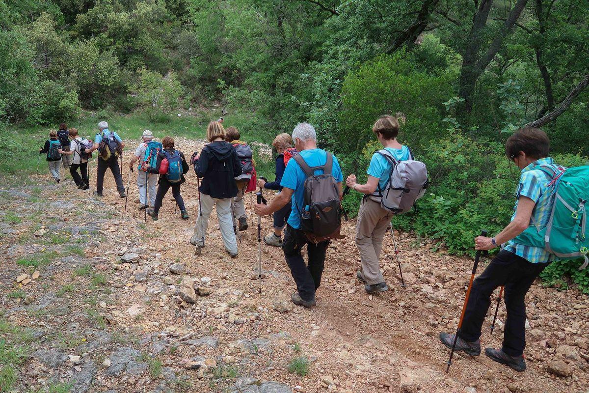 Belle randonnée , un jour sans encombrements , sans pl..e, le top !