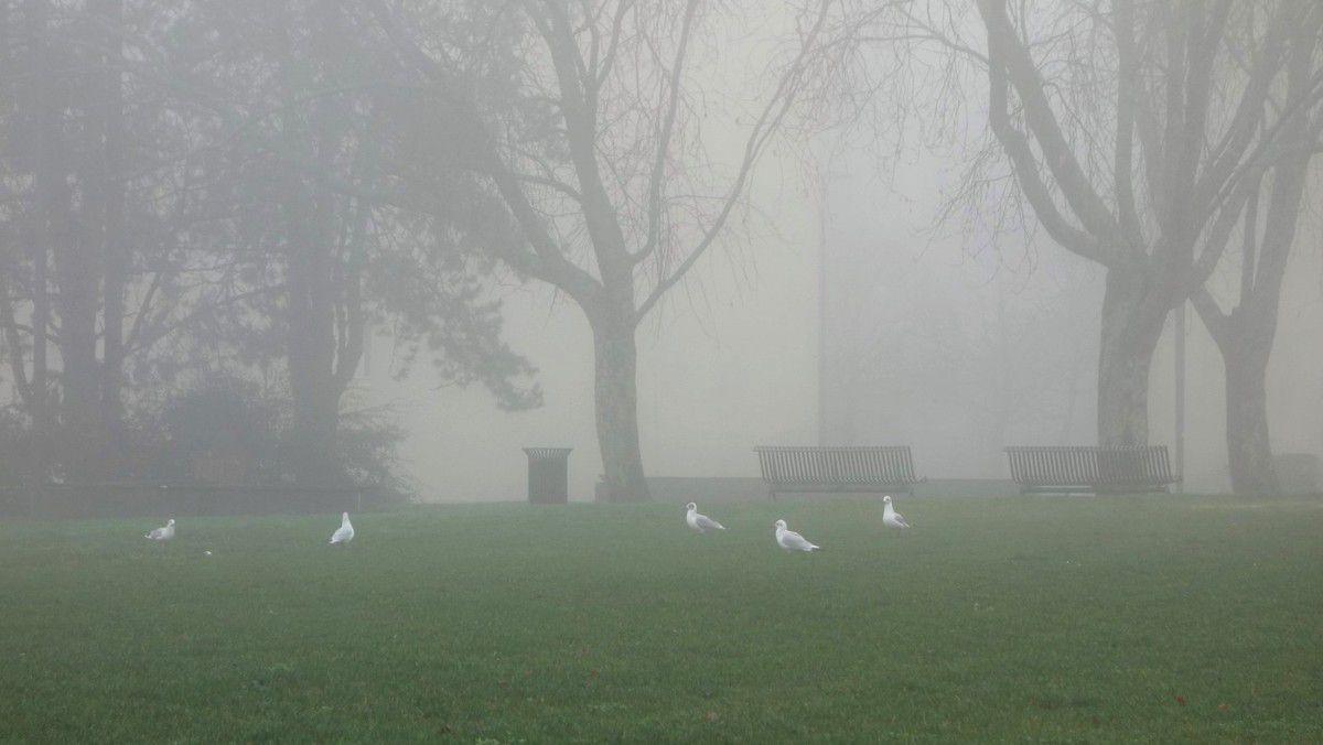 Penhars in the fog ...