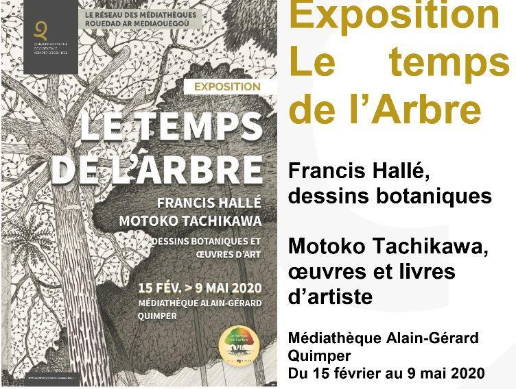 Entrez dans Le Temps de l'arbre à Quimper à la médiathèque Alain-Gérard