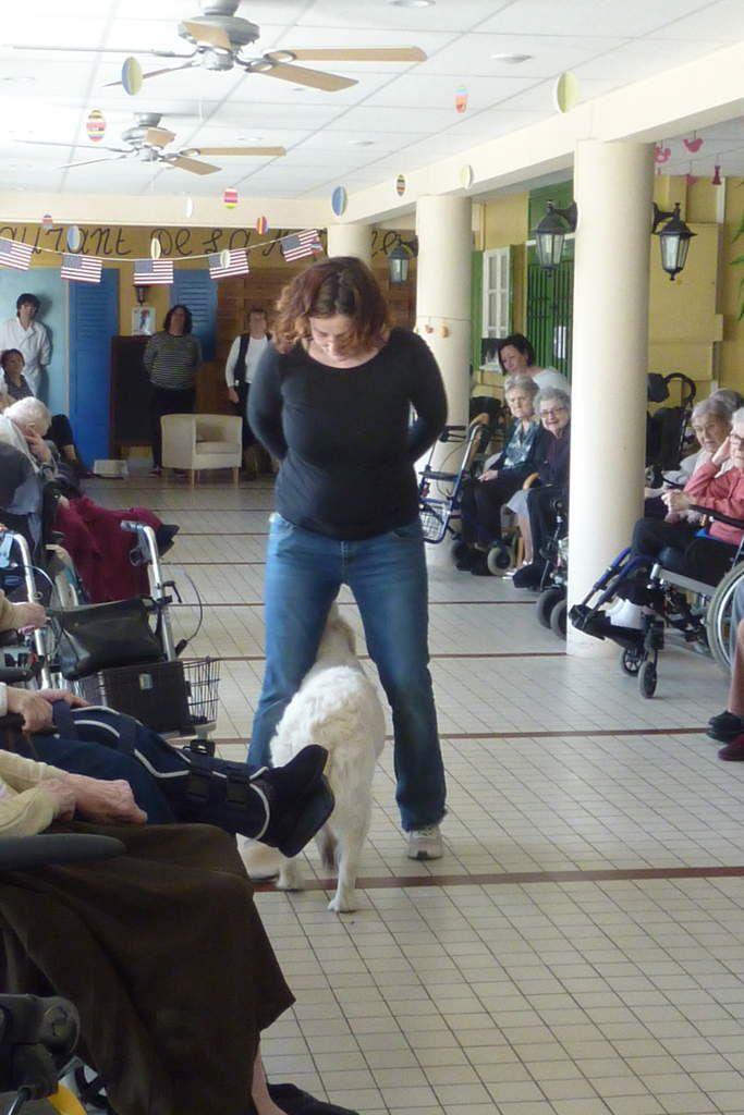 Dog Dancing à la maison de retraite