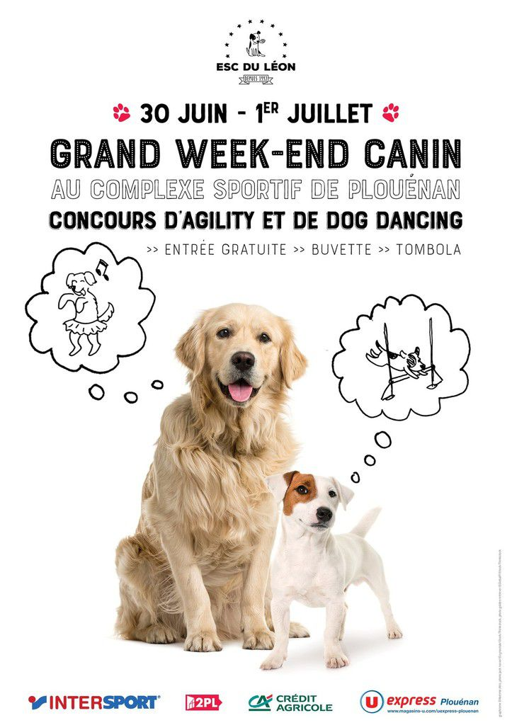 Grand week-end canin : dog dancing et agility