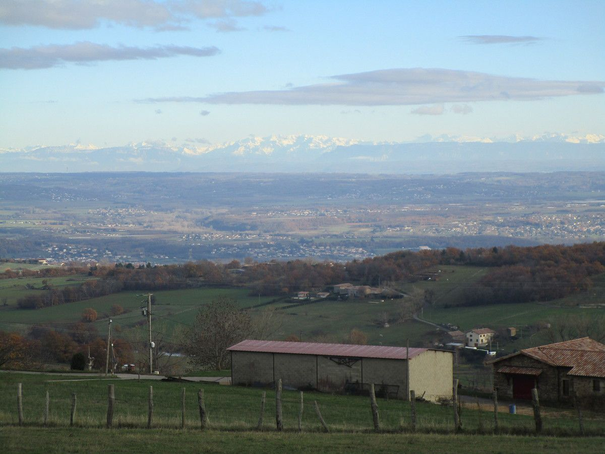 Condrieu - Col de L'Oeillon -  Promeneurs et Randonneurs   Vendredi 7 décembre 2018