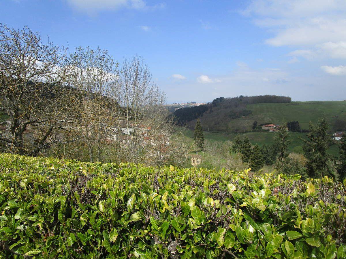 St Clément sur Valsonne (69) Promeneurs 2-  Mardi 30 avril