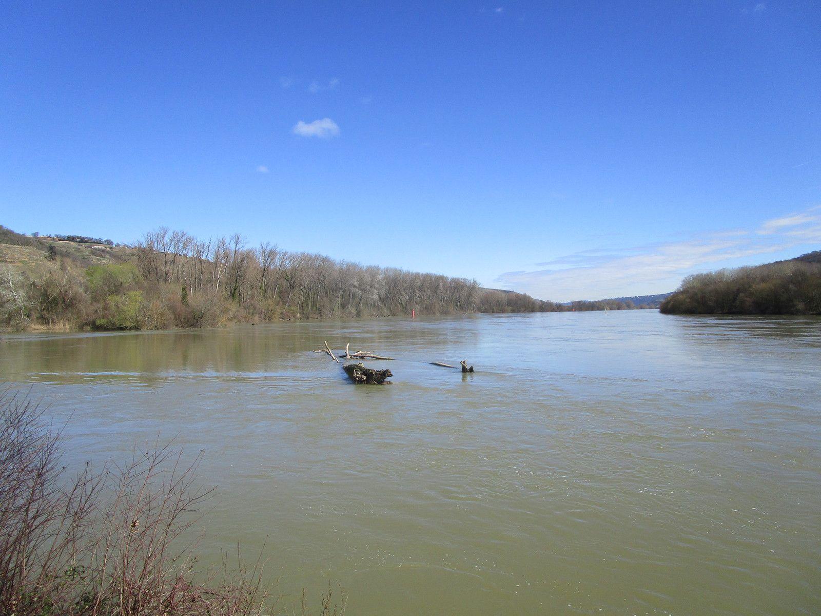 Loire sur Rhône -  Découverte -  Mercredi 11 mars 2020
