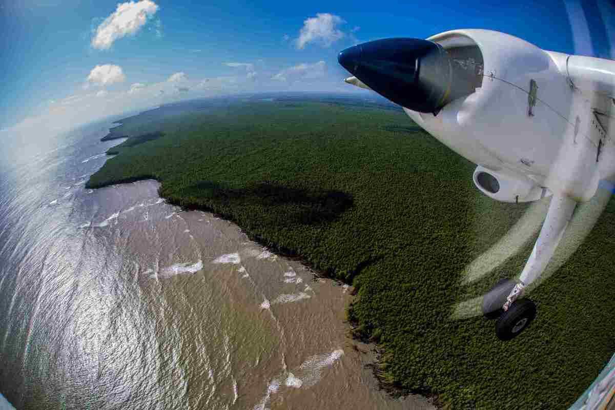 Survol de la Guyane. Crédit photos: AFB - Pelagis - Antoine Baglan.