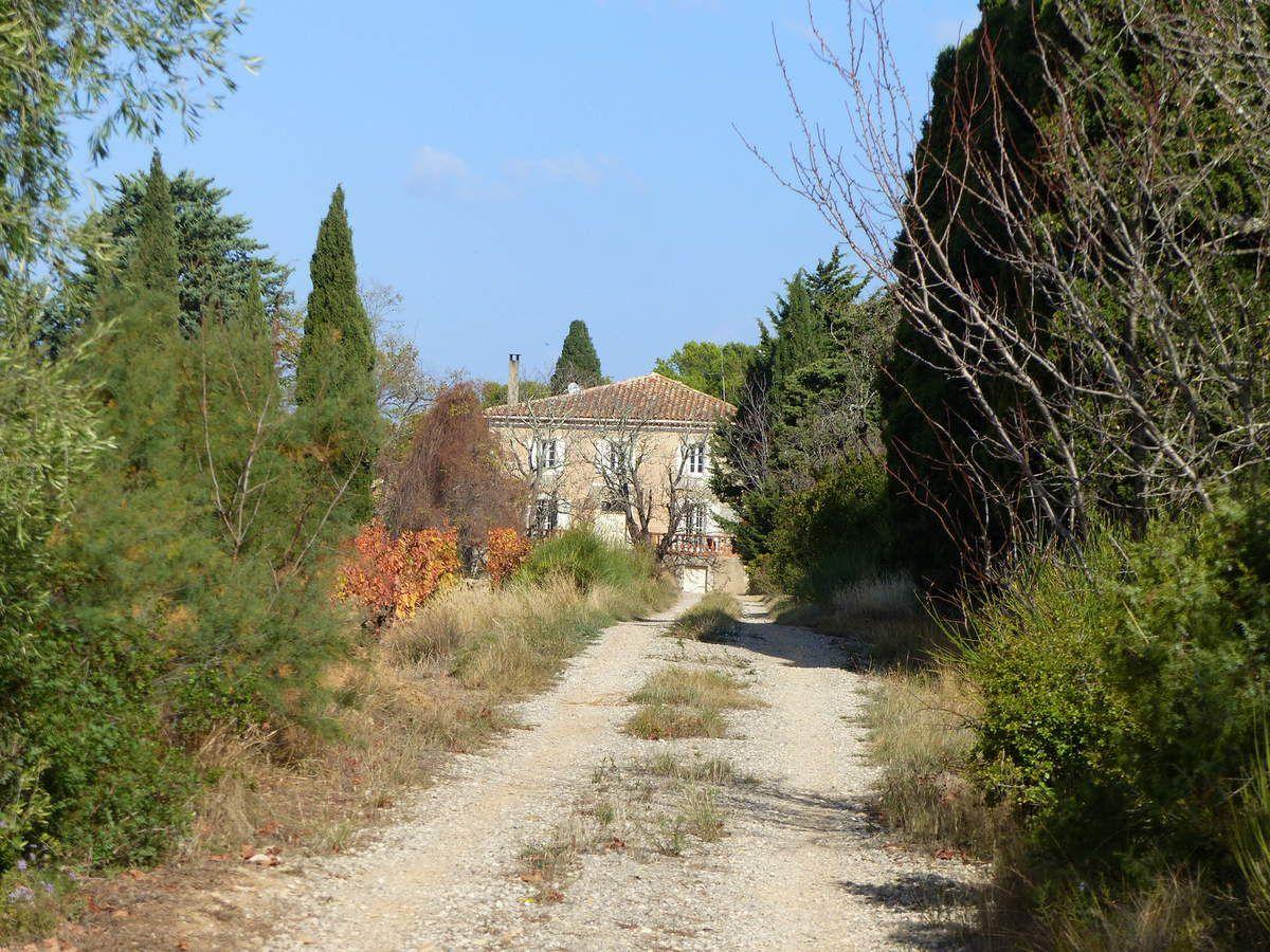 Montseret Donos
