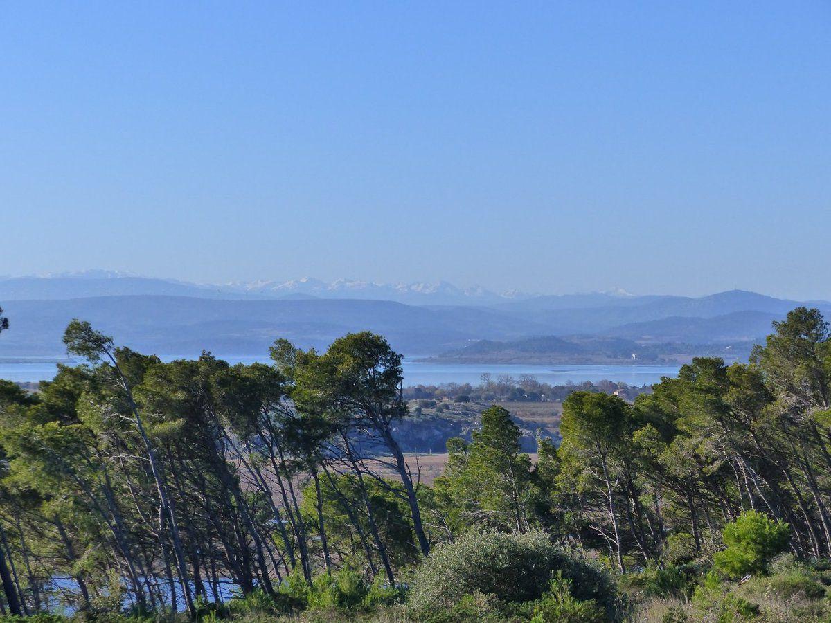 Nouvelles vues sur ces merveilleux paysages : à notre gauche, les étangs, et face à nous Narbonne et sa cathédrale