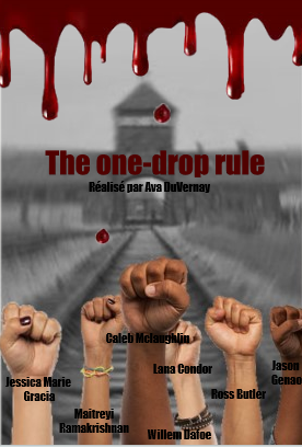 The one-drop rule