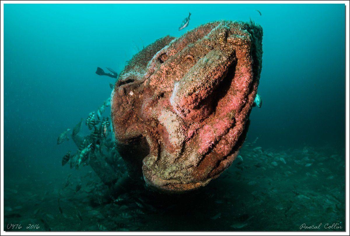 U-976, célèbre U-boot