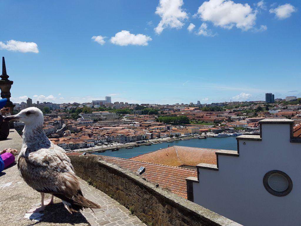 Voyage au Portugal 16/05-23/05 2019
