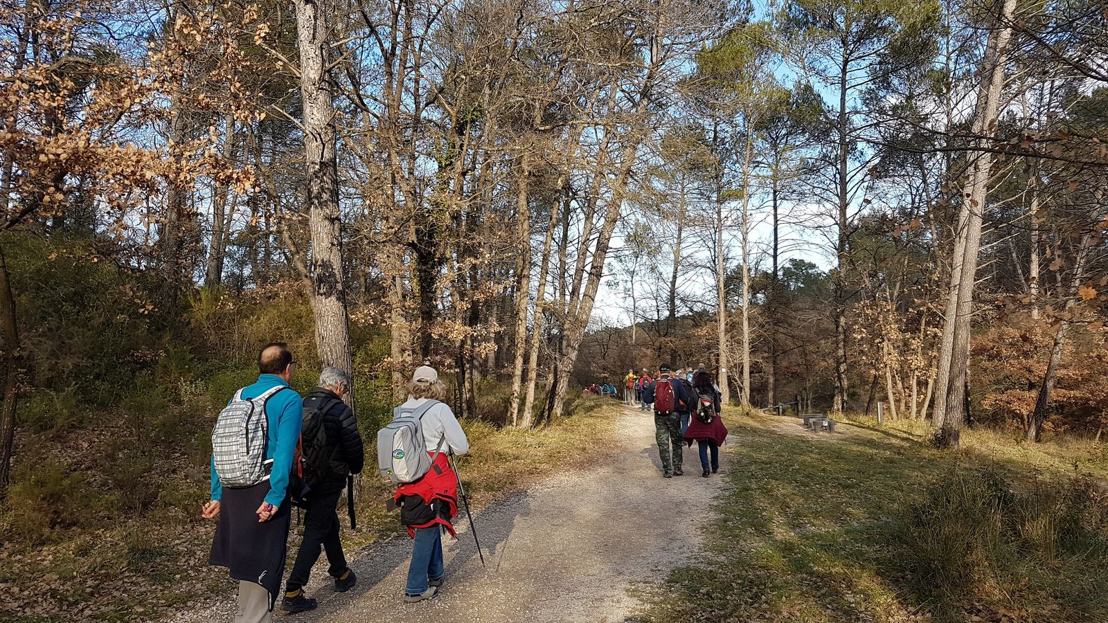 Rando du 06/01/2020-Forêt de Gréasque
