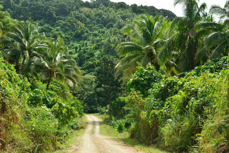 Vanua Levu, Fidji