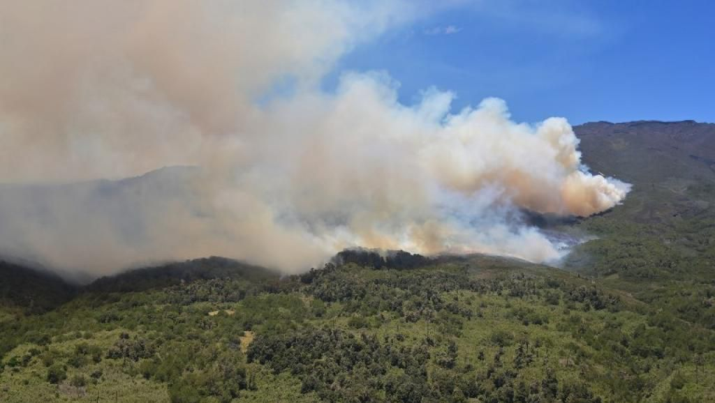Le parc national du Mont Kenya ravagé par des incendies