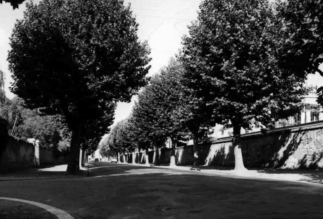 Boulevard Jean Pain (photo de 1965) _ le boulevard qui sépare la Bajatière(parc Paul Mistral) et le centre historique de Grenoble