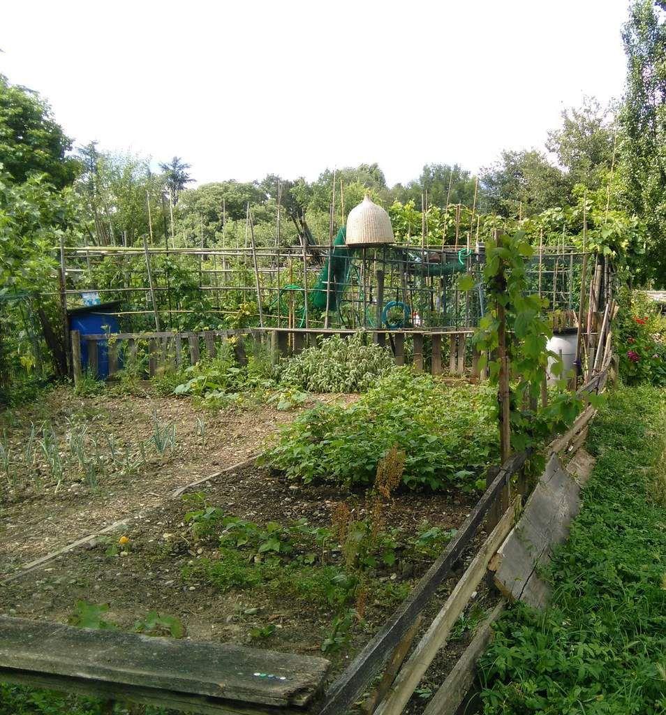 Extension Sud du parc avec ses parcelles de jardins individuels (une quarantaine), un petit air de campagne miniature (quelques Ha)