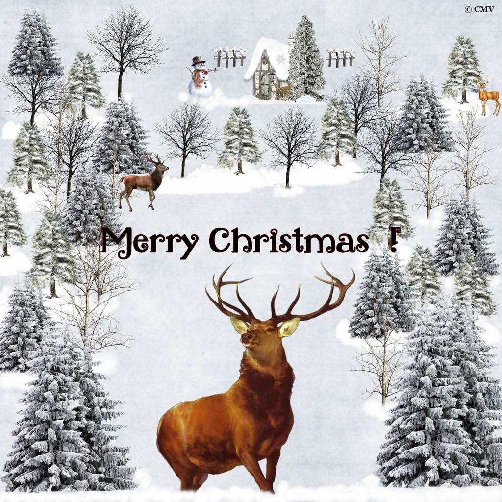 "Carte ""Merry Christmas"" avec rennes en anglais"
