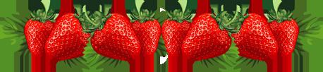 """Marque-page """"la fraise des bois"""""""