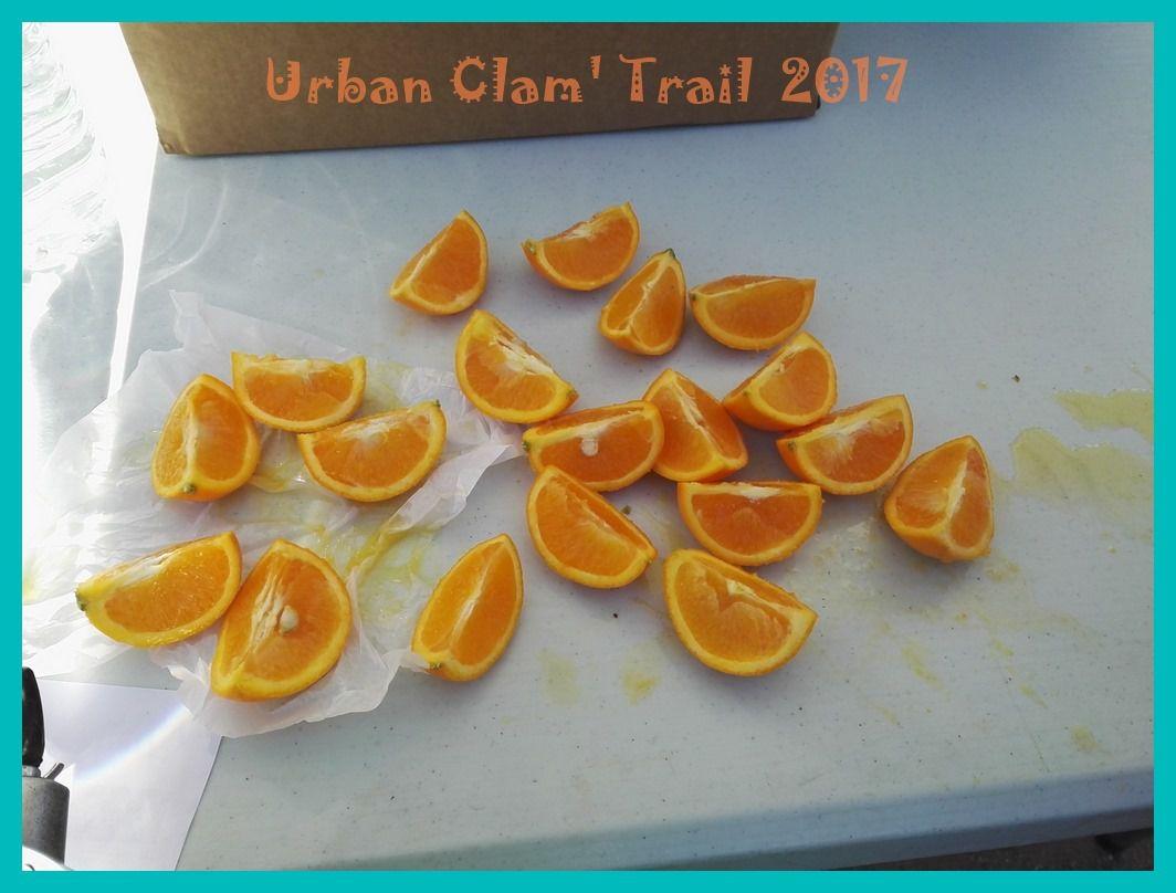 Urban Clam' Trail 2017.