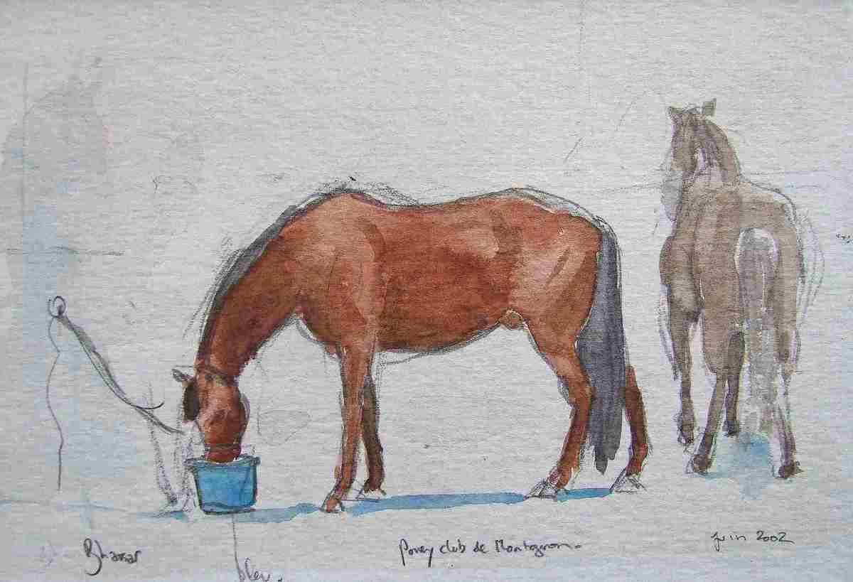 Echelonné entre 1982 et 2017, voici un choix de croquis tous pris sur le motif ; dessinés dans des conditions très variées et parfois à la limite du possible. C'est un journal de bord artistique varié ; il est un reflet fidéle d'une vie vécue à dessiner.