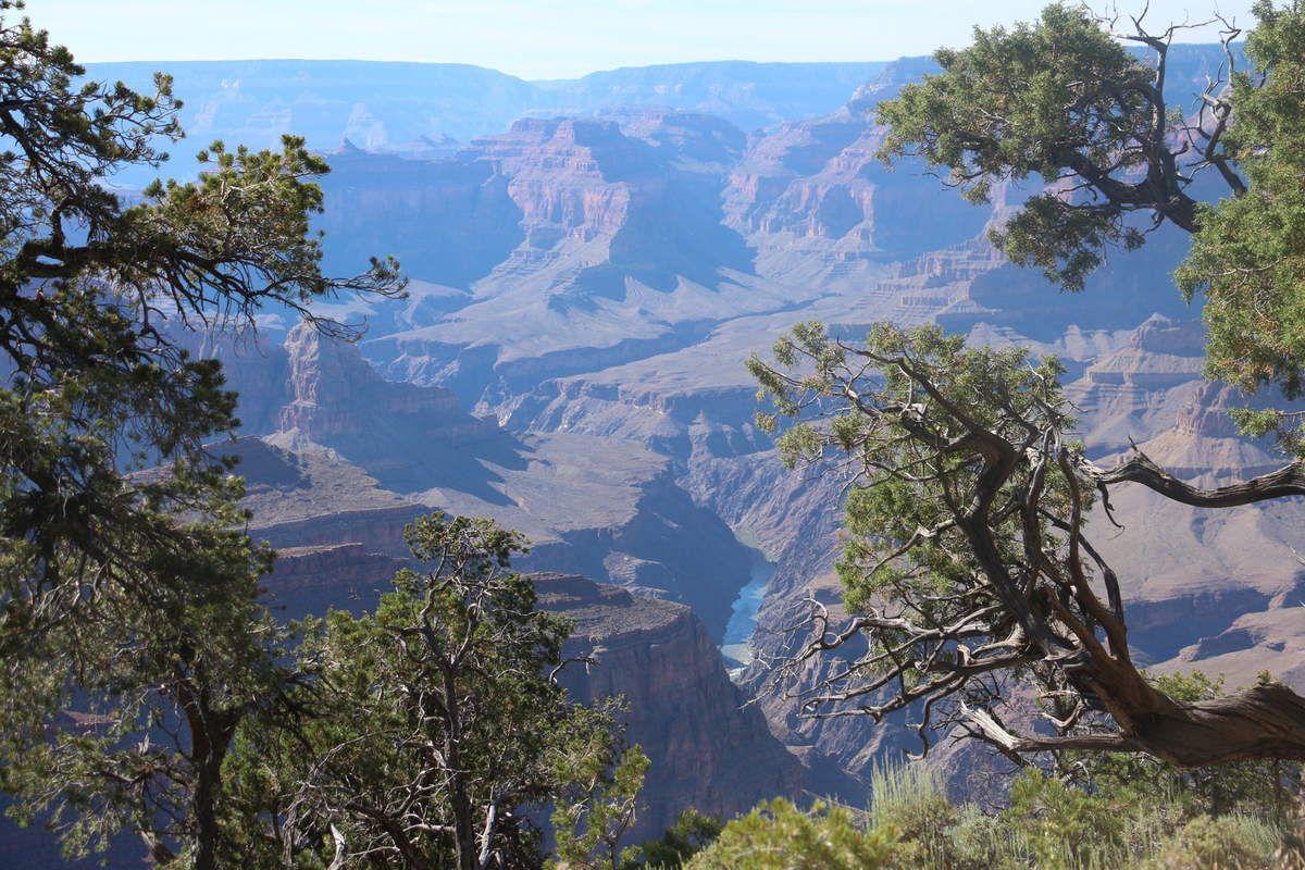 Road trip ouest américain, Grand Canyon, 17 juin