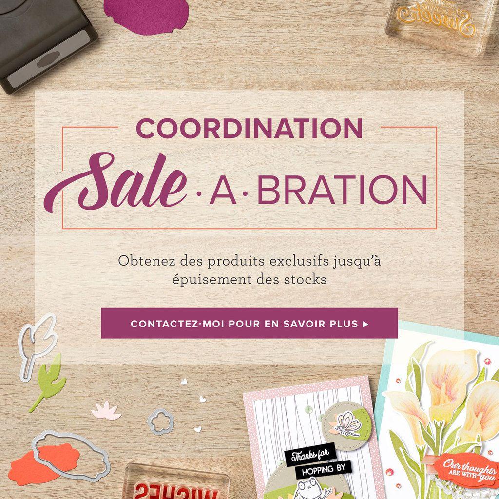 Les produits coordonnés à la Sale A Bration sont disponible