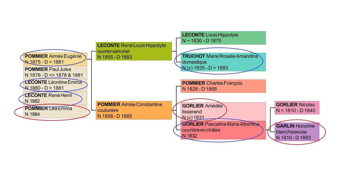 Arbre généalogique des LECONTE/POMMIER