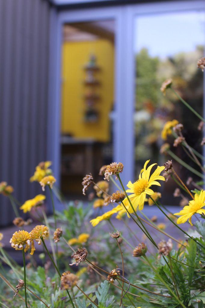 Le jardin à la veille de l'été