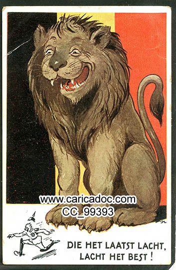 Lions tigres