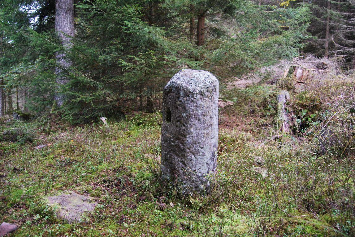Une rare borne milliaire romaine ayant survécu aux travaux forestiers. Un mille romain correspond à env. 1470 mètres