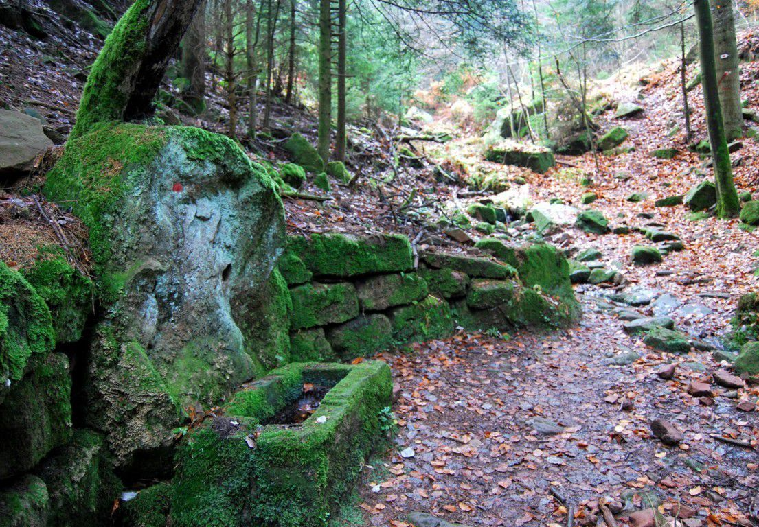Une nuit au refuge du Schneeberg