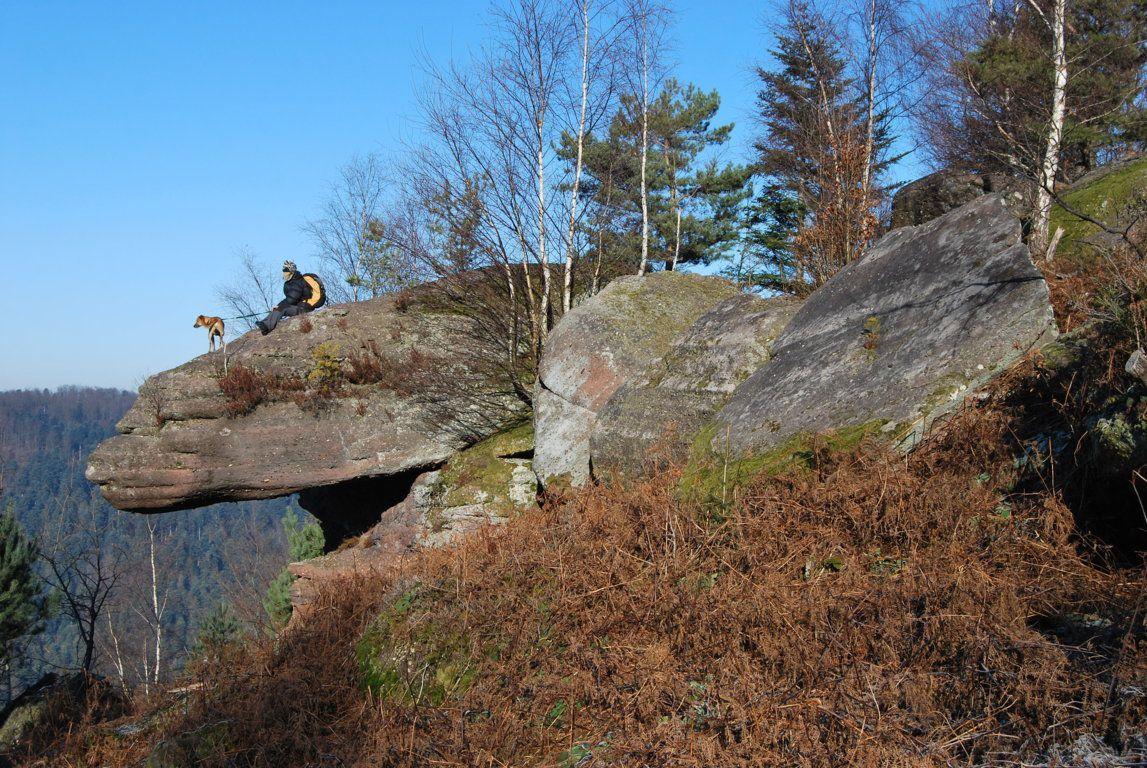 Les pierres levées du Kuhbergkopf